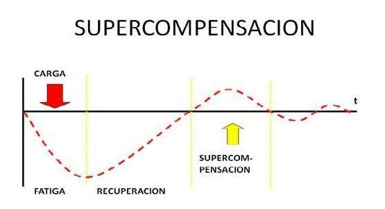 La Recuperacion y el Principio de Supercompensacion