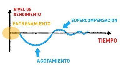 principio de supercompensacion