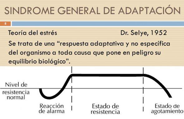 sindrome general de adaptacion según Seyle