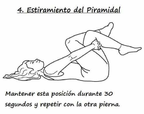 Estiramiento del Piramidal