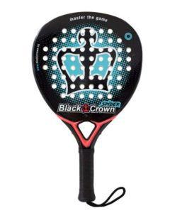 BLACK CROWN SPIDER